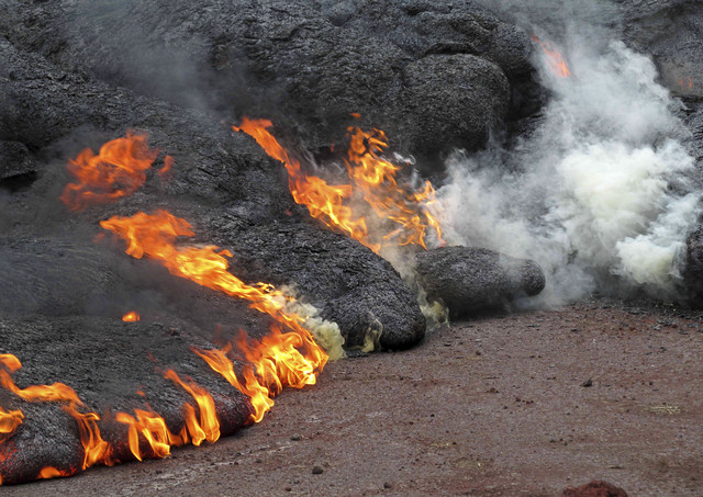 The lava flow from the Kilauea Volcano that began on June 27 burns near the town of Pahoa on the Big Island of Hawaii, Sunday, Nov. 9, 2014. Officials said Monday, Nov. 10, that a stream of lava h ...