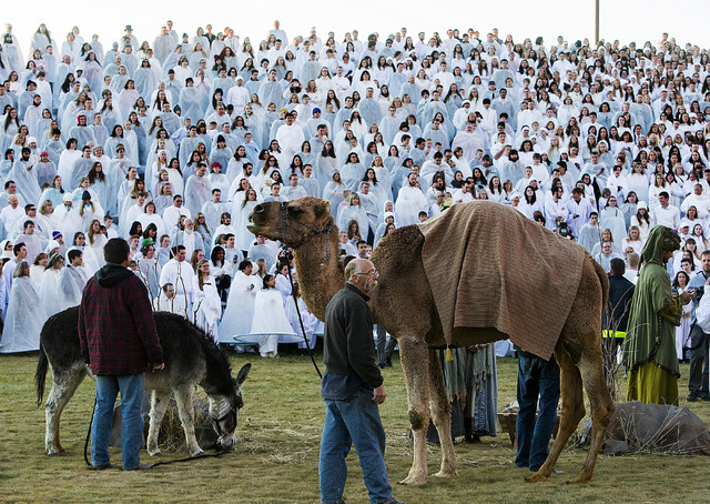 More than 1,000 participants gather at Rock Canyon Park in Provo, Utah, Monday, Dec. 1, 2014, in an attempt to set a world record for the largest recreation of a live Nativity scene. The event did ...