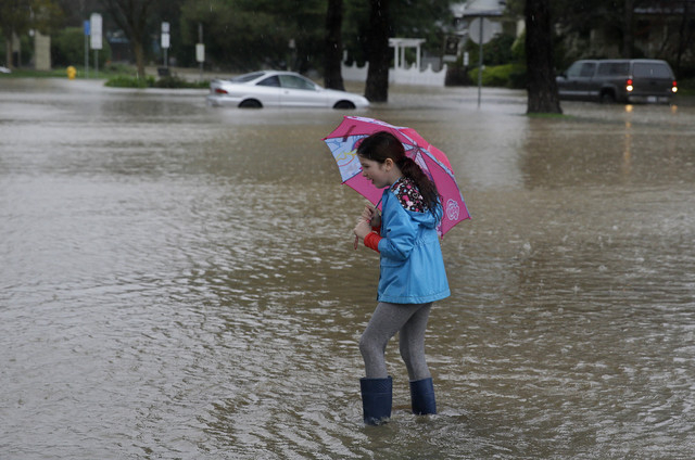 Hailey Thistle, 8, walks into a flooded parking lot at a shopping center Thursday, Dec. 11, 2014, in Healdsburg, Calif. A powerful storm churned through Northern California Thursday, knocking out  ...