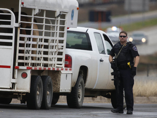 Troy police Sgt Ken Wolff stands guard at a checkpoint up the street from other officers looking  for a gunman who shot a weather forecaster as he walked out of the KCEN-TV studio along Interstate ...