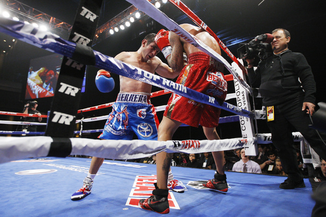 Mauricio Herrera hits Jose Benavidez with a left on the ropes during their fight Saturday, Dec. 13, 2015 at the Cosmopolitan. (Sam Morris/Las Vegas Review-Journal)