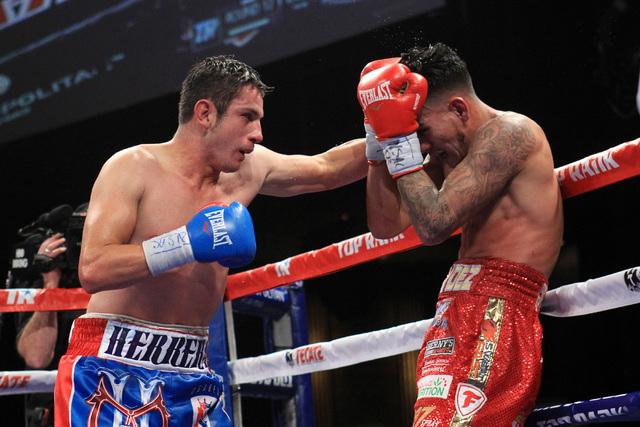 Mauricio Herrera hits Jose Benavidez with a left during their fight Saturday, Dec. 13, 2015 at the Cosmopolitan. (Sam Morris/Las Vegas Review-Journal)