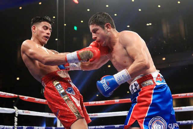 Mauricio Herrera hits Jose Benavidez with a right to the body during their fight Saturday, Dec. 13, 2015 at the Cosmopolitan. (Sam Morris/Las Vegas Review-Journal)