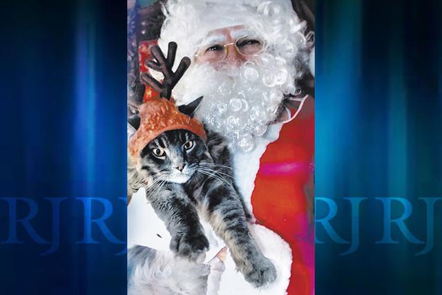Las Vegas Review-Journal columnist Doug Elfman's cat Oscar (as in Goodman) meets Cat Santa at Bonanza Cat Hospital, a no-kill veterinarian's sanctuary. (Courtesy photo)