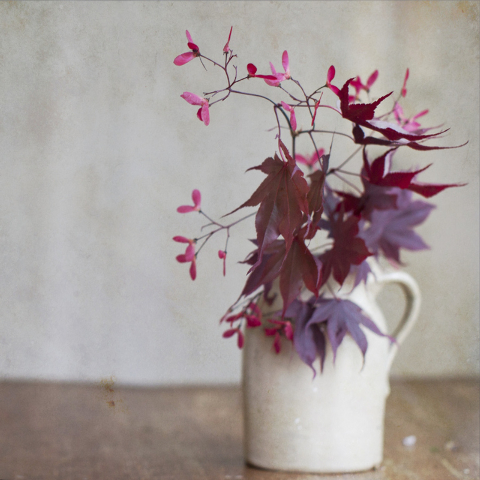 Thinkstock Simple red maple leaves add a pop of color.