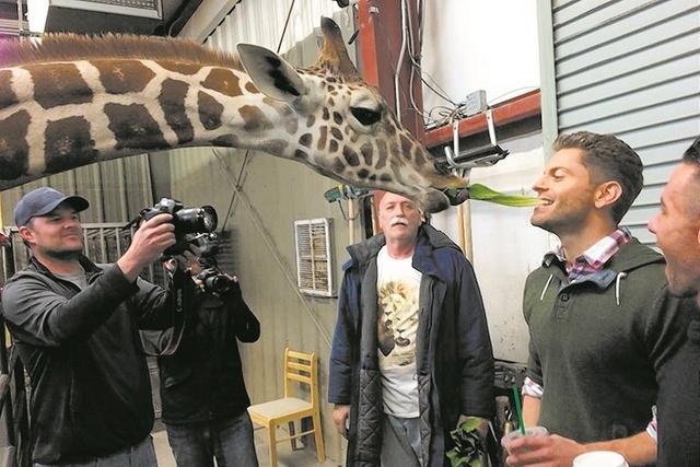 Jaymes Vaughn at the Lion Habitat Ranch (Courtesy)