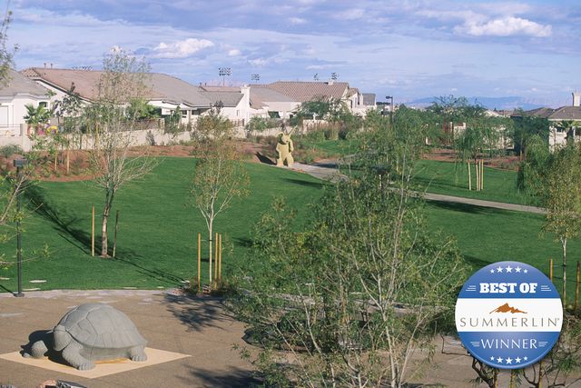 Courtesy photo The Willows Park on Desert Marigold Lane received the most votes for Best Park. The 12.7 acre park features a resident-only pool with water slides, children's play area, lighted bas ...