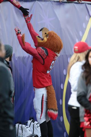 University of Utah's mascot, Swoop, interacts with a fix fans during the second half of the  Royal Purple Las Vegas Bowl at Sam Boyd Stadium, Las Vegas, Saturday, Dec. 20, 2014. (Donavon Lockett/L ...