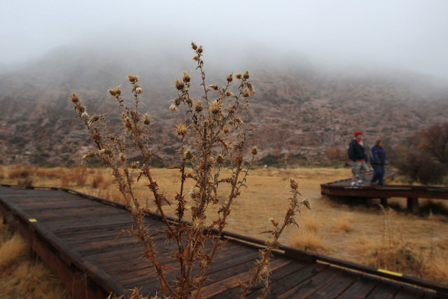 Tourists stroll the fog shrouded boardwalk in Red Spring at Calico Basin Wednesday, Dec. 3, 2014. (Sam Morris/Las Vegas Review-Journal)