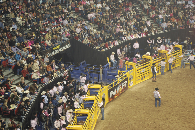 Nearly 17,000 fans will pack the Thomas & Mack Center nightly for the 30th installment of the National Finals Rodeo in Las Vegas. (NEAL REID/SPECIAL TO THE LAS VEGAS REVIEW-JOURNAL)