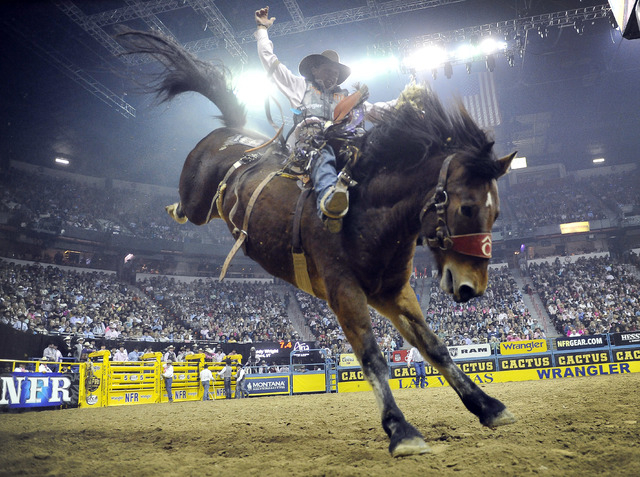 Cody Wright of Milford, Utah competes in the saddle bronc riding during the fifth go-round of the National Finals Rodeo at the Thomas & Mack Center on Monday, Dec. 8, 2014, in Las Vegas.  (David B ...