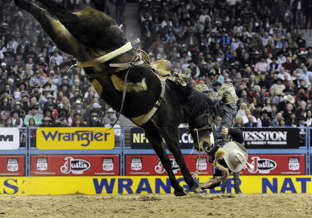 Saddle bronc rider Bradley Harter from Loranger, La., is bucked off of his horse during the tenth go-round of the National Finals Rodeo at the Thomas & Mack Center in Las Vegas, Saturday, Dec. 13, ...