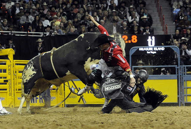 Bull fighter Cody Webster jumps in front of a bull to protect bull rider Cody Teal from Kountze, Texas, after Teal was bucked from his bull during the tenth go-round of the National Finals Rodeo a ...