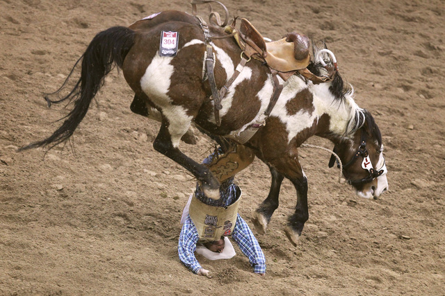 Chad Ferley form Oelrichs, S.D. gets thrown from Wars Marigold during the saddle bronc riding competition at the first go around at the National Finals Rodeo Thursday, Dec. 4, 2014 at the Thomas & ...