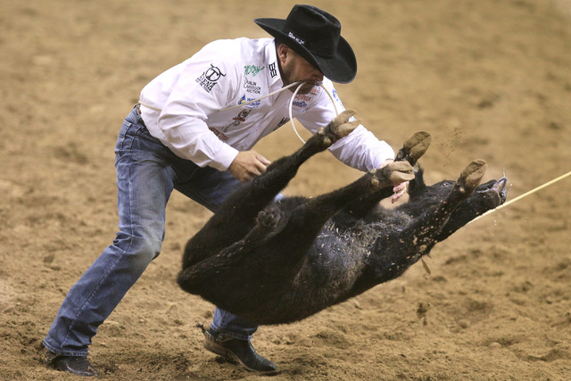 Cody Ohl from Hico, Texas, throws his calf during the tie-down roping competition at the first go around at the National Finals Rodeo Thursday, Dec. 4, 2014 at the Thomas & Mack Center. (Sam Morri ...
