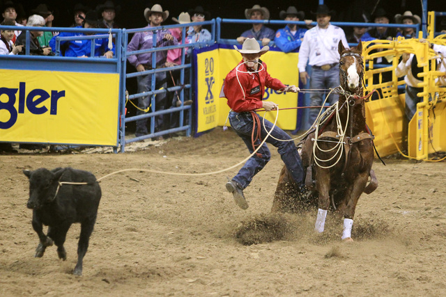 Winner Marty Yates form Stephensville, Texas dismounts during the tie-down roping competition at the first go around at the National Finals Rodeo Thursday, Dec. 4, 2014 at the Thomas & Mack Center ...