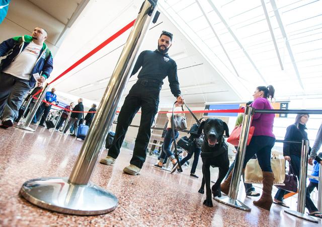 Lead explosives detection K-9 handler Timothy Webb, center, works with passenger screening canine Ozzy, a labrador retriever, as passengers walk through the Terminal 3 TSA checkpoint at McCarran I ...