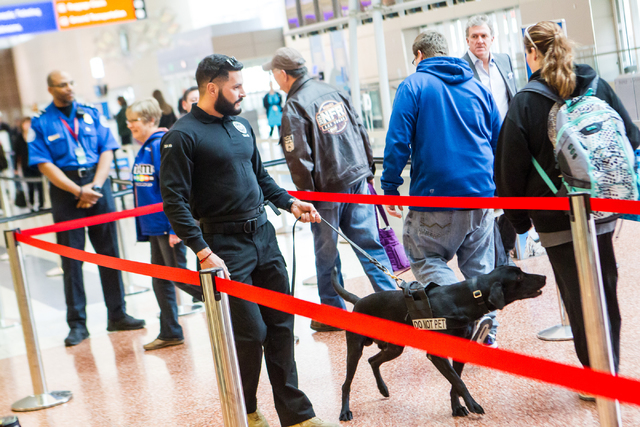 Lead explosives detection K-9 handler Timothy Webb works with passenger screening canine Ozzy, a labrador retriever, as passengers walk through the Terminal 3 TSA checkpoint at McCarran Internatio ...
