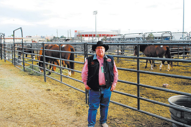 Wrangler National Finals Rodeo Livestock Superintendent John Barnes leads a crew of 11 that takes care of more than 520 animals every year during the event. (Neal Reid/Special to the Review-Journal)