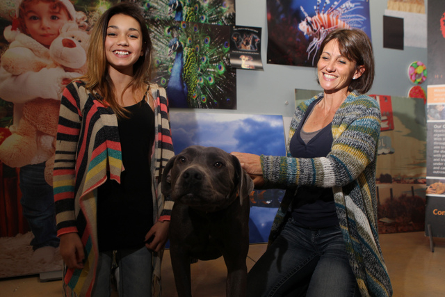 Kendall Stevens, left, 12, and her mother Christy, founder of Hearts Alive Village Las Vegas, interact with King, a 3-year-old rescued labrador-mix, at Pictographics, 4830 W. Oquendo Road, in Las  ...