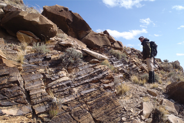 Dr. Leif Tapanila, coauthor and Associate Professor at Idaho State University, standing next to rocks deposited within the crater after the impact. (Courtesy Andrew Retzler)