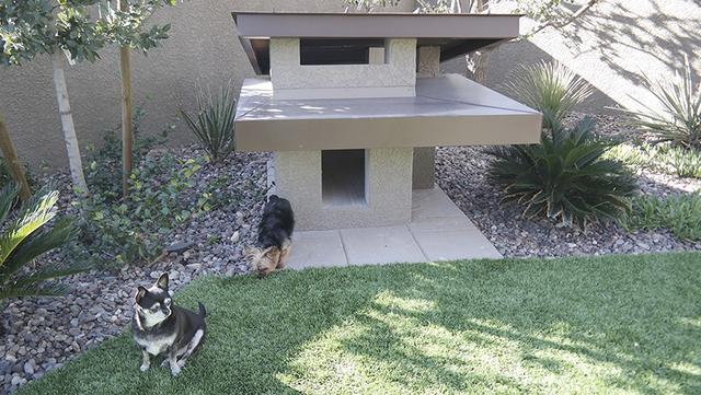 Even the dog house has a unique design. (Courtesy)