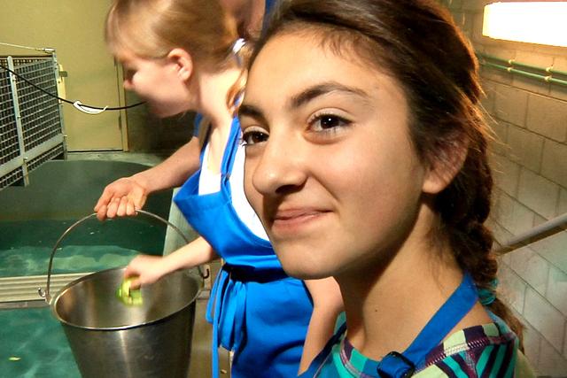 Bella Depasquale of Laguna Nigel, CA, smiles after feeding sea turtles at Shark Reef Aquarium at Mandalay Bay Resort and Casino on Wednesday, December 31, 2014. (Michael Quine/Las Vegas Review-Jou ...