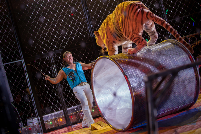 The Zelzah Shrine Circus is planned at 7:30 p.m. Jan. 8 and 9 and 11 a.m. and 3 and 7:30 p.m. Jan. 10 and 11 at the Orleans Arena, 4500 W. Tropicana Ave. The circus is set to feature elephants, ti ...