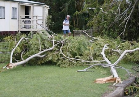 A resident of the coastal town of Yeppoon stands in his front yard among fallen tree branches after Cyclone Marcia hit northeastern Australia, Friday, Feb. 20, 2015.(Reuters/Jason Reed)