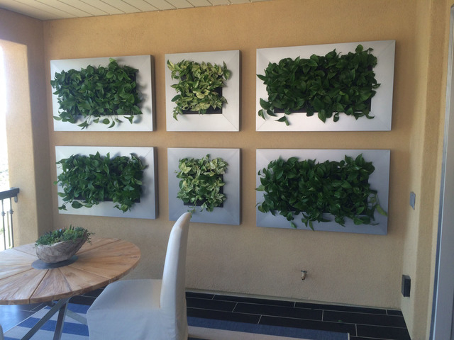Courtesy Interior Gardens An organic living wall has become the latest trend among plant lovers.