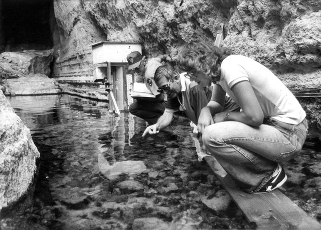 James Deacon, center, points out endangered pupfish in Devil's Hole, 90 miles west of Las Vegas, in 1984. (Gary Thompson/Las Vegas Review-Journal)