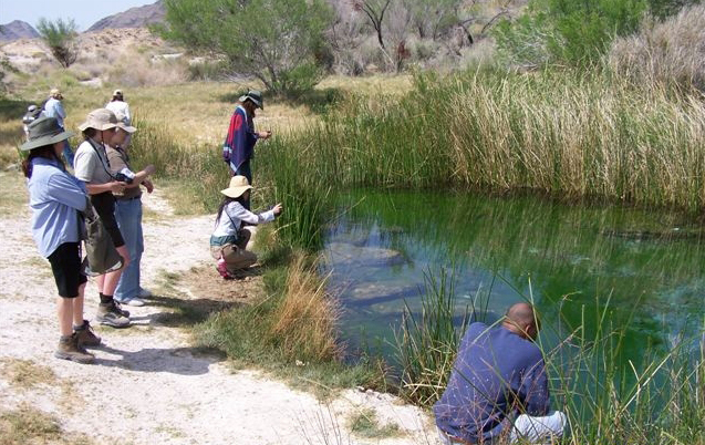 The Nevada Naturalist program plans to host a free open house from 8:30 a.m. to 3 p.m. March 7 at the Lifelong Learning Center, 8050 Paradise Road. Those interested in the program are invited to c ...