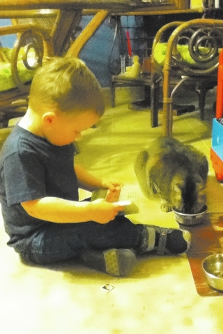 "Catherine Wellman of Las Vegas shared this photo, adding, ""On Jan. 21, my 2½-year-old grandson announced that he was going to read this good book to the cat ... The cat was not impressed."""