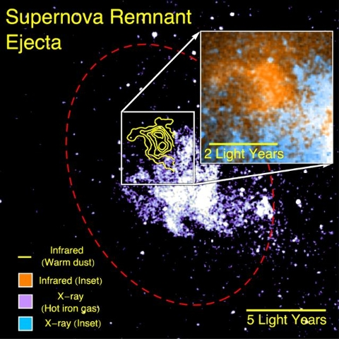 Supernova remnant dust detected by SOFIA (yellow) survives away from the hottest X-ray gas (purple). The red ellipse outlines the supernova shock wave. The inset shows a magnified image of the dus ...