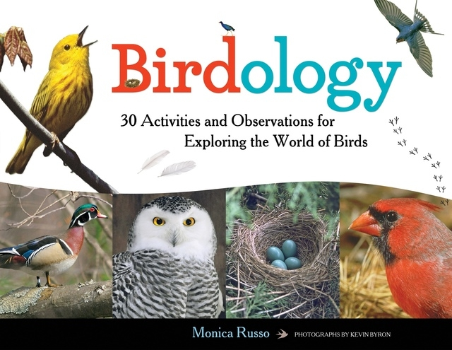 """""""Birdology"""" is a great introduction for budding birdwatcher. (Special to View)"""