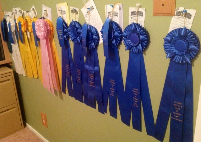 Talent for jams and jellies leads to county fair following