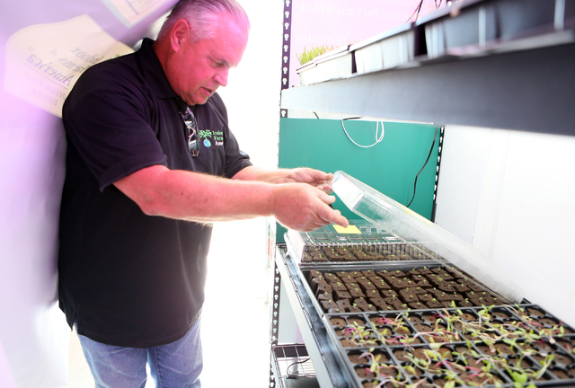 Indoor Farms of America principal Ronald Evans looks at young crops inside a grow truck Monday, March 30, 2015, in Henderson. Indoor Farms of America owners plan to exhibit their 192-square-foot d ...