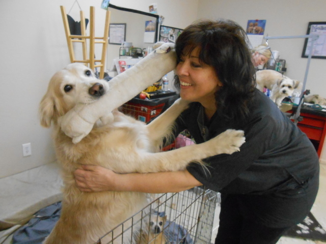Melissa Malfara, owner of Melissa's Grooming, 8540 Del Webb Blvd., gets a kiss from Mandy, one of her dogs, Feb. 12, 2015. She brings all three of her dogs to the shop and encourages her empl ...