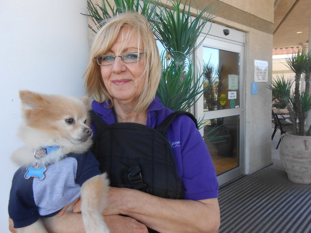 Lorraine, who asked that her last name not be used, holds her rescue dog, Cyrano, outside her work, Royal Springs Healthcare and Rehab, 8501 Del Webb Blvd., Feb. 24, 2015. Cyrano goes to work with ...