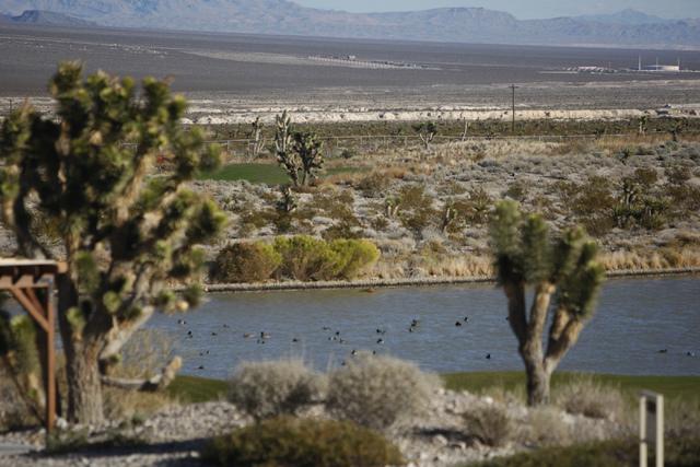 The view from the Las Vegas Paiute Resort Monday, Dec. 22, 2014. Congress passed legislation that designates Tule Springs as Nevada's only national monument. (Erik Verduzco/Las Vegas Review ...
