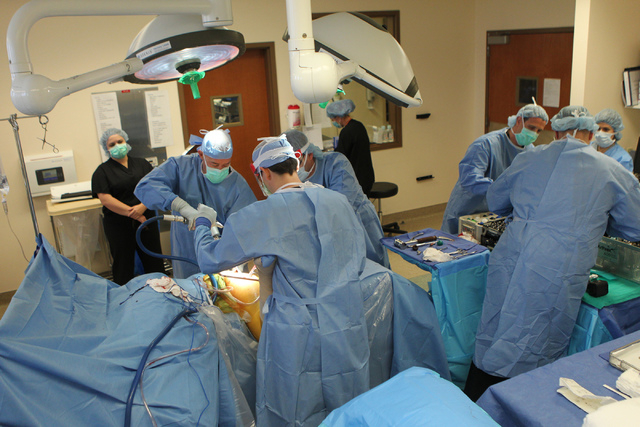 Orthopedic surgeon Dr. Michael Crovetti, far left on the operating table, and his medical team perform a hip replacement surgery procedure at the Coronado Surgery Center in Henderson, Monday, Apri ...