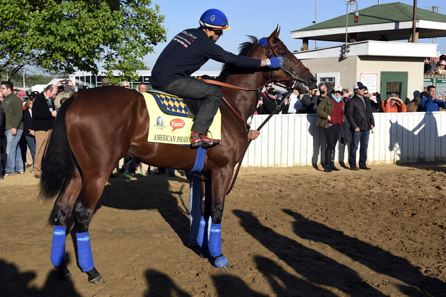 Apr 28, 2015; Louisville, KY, USA; Exercise rider Jorge Alvarez adjusts the dribble of  Kentucky Derby hopeful American Pharoah before working out at Churchill Downs. Mandatory Credit: Jamie Rhode ...