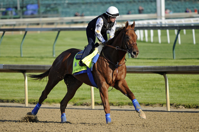 Exercise rider Dana Barnes works out Kentucky Derby hopeful Dortmund trained by Bob Baffert at Churchill Downs. (Jamie Rhodes-USA TODAY Sports)