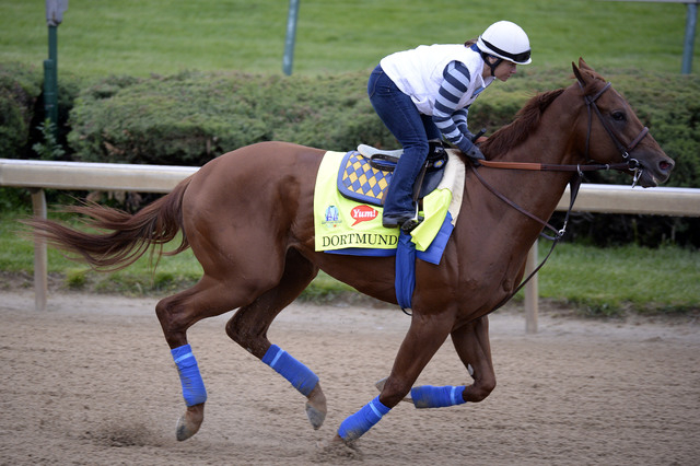 Apr 30, 2015; Lousiville, KY, USA; Exercise rider Dana Barnes works out Dortmund trained by Bob Baffert at Churchill Downs. Mandatory Credit: Jamie Rhodes-USA TODAY Sports