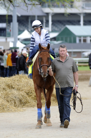 Roberto Luna leads Kentucky Derby entrant Dortmund with exercise rider Dana Barnes aboard to the barns following work outs at Churchill Downs. (Jamie Rhodes-USA TODAY Sports)