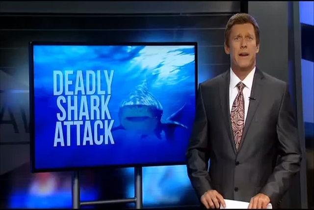 Shark attack (KHNL/NDN)