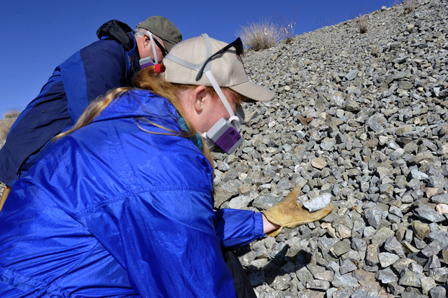 UNLV professors, Rodney Metcalf, Ph.d, Geology and Brenda Buck, Ph.d., Soil Science examine rocks for naturally occurring asbestos, Saturday, Dec., 21 2013 in southeastern Boulder City. Buck is th ...