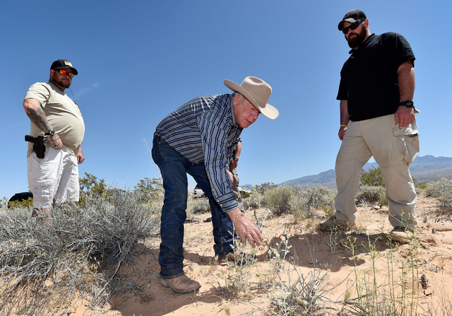 Rancher Cliven Bundy, center, flanked by armed security, examines the desert foliage where his cattle continues to graze during an event near his ranch in Bunkerville on Saturday, April 11, 2015.  ...
