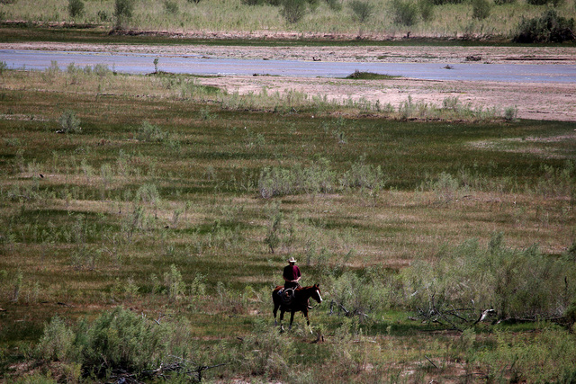 A lone man on horseback rides next to the Virgin River near Cliven Bundy's ranch in Bunkerville on Sunday, April 13, 2014.  Bundy and the Bureau of Land Management  reached a deal to stop the catt ...
