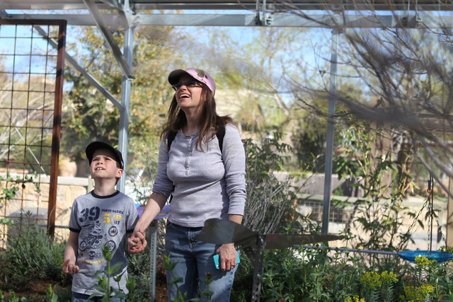 The Springs Preserve, 333 S. Valley View Blvd., has reopened its Butterfly Habitat for spring. The habitat is open each fall and spring, as temperatures permit, and features hundreds of butterflie ...